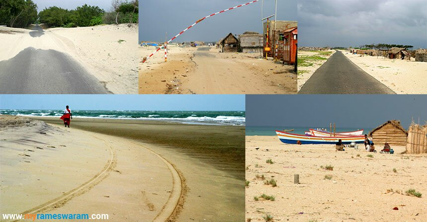 Dhanushkodi beach - Birds Sanctuaries in Dhanushkodi