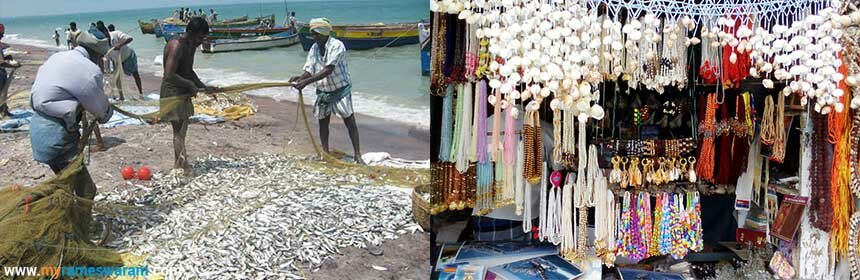 fishery man life in rameswaram